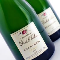 Diebolt-Vallois